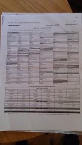 Listan över livsmedel jag kan äta och de jag reagerat på i testet. Jag stryker vartefter jag planerat in maten i mitt schema
